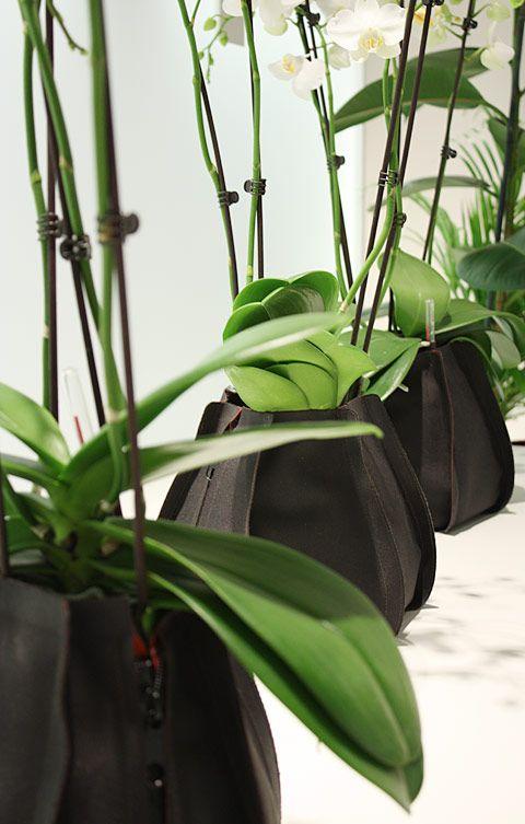 Vasi design per piante da interno Urban Garden  Arredare ...