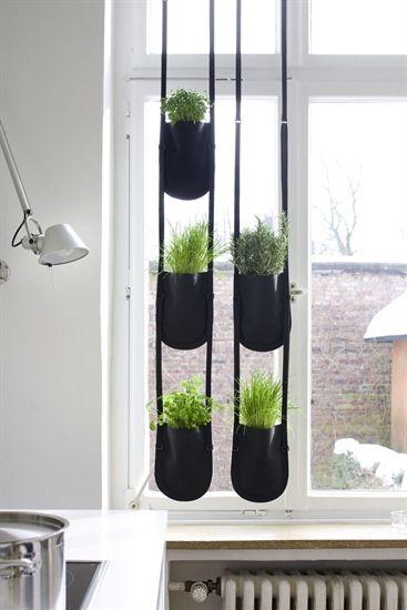 Vasi Piante Da Interno : Vasi design per piante da interno urban garden arredare
