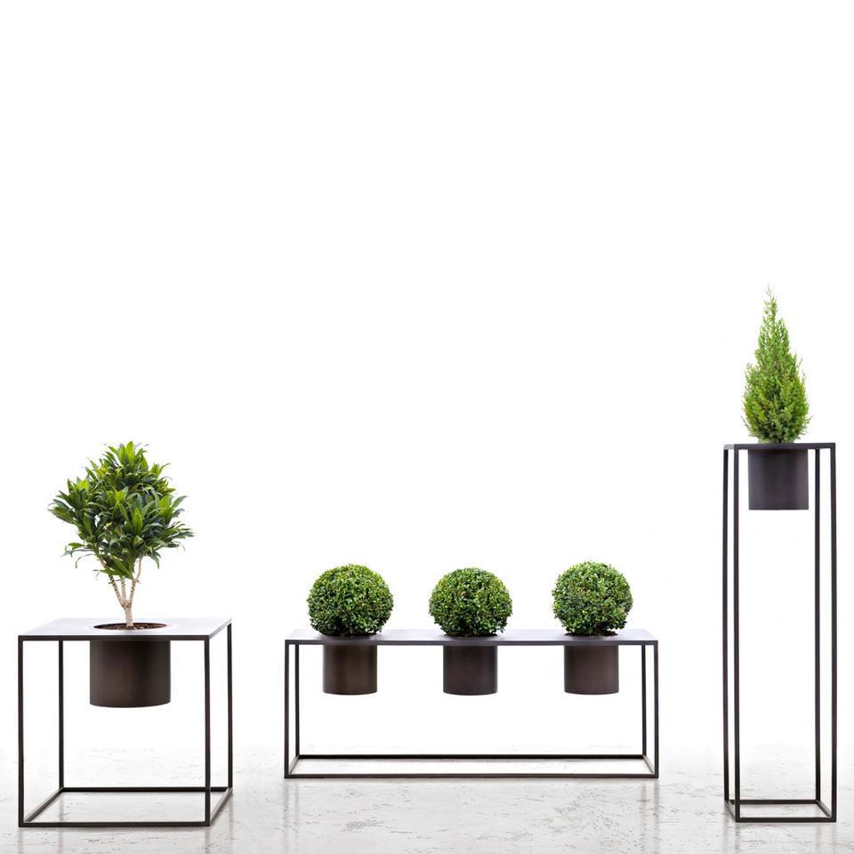 Vasi di design la nuova estetica delle fioriere de for Portavasi da interno