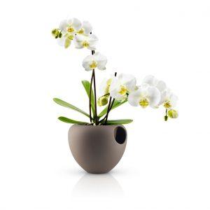 Un vaso moderno per arredare con le orchidee