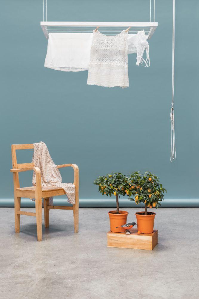 Hangbird-White(1)